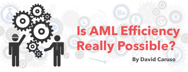 AML Efficiency